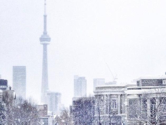 TorontoWhite's Avatar